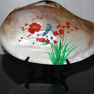 Тропическа рисувана мида 30 х17 х 4 см