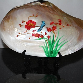 Tropical shell with painting
